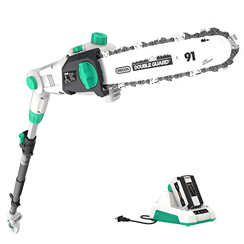 Litheli 40V Cordless Pole Saw 10 inches with 2.5AH Battery and Charger